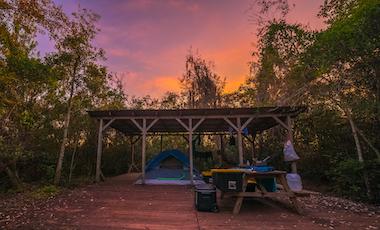 Camping Platform - Okefenokee Swamp