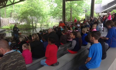 Okefenokee Swamp Park Daily Nature Show
