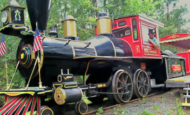 Guided Railroad Tour Train - Okefenokee Swamp Park