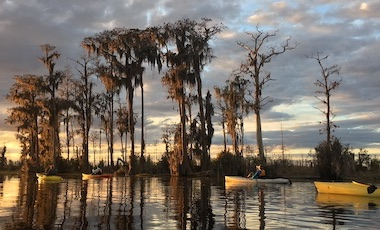 Kakayers at Sunset on the Okefenokee Swamp Prairi