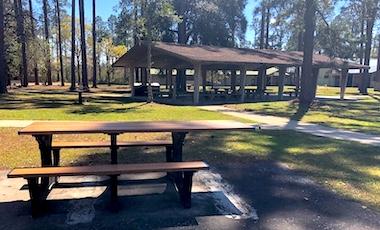 Picnic Area - Okefenokee National Wildlife Refuge